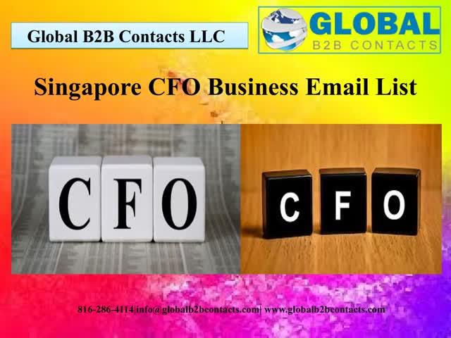 Singapore CFO Business Email List : u/DaynaIola