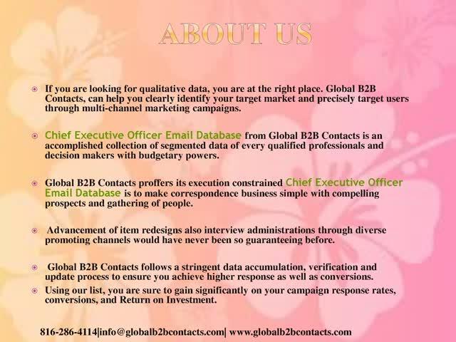 Chief Executive Officer Email Database : u/lanachin
